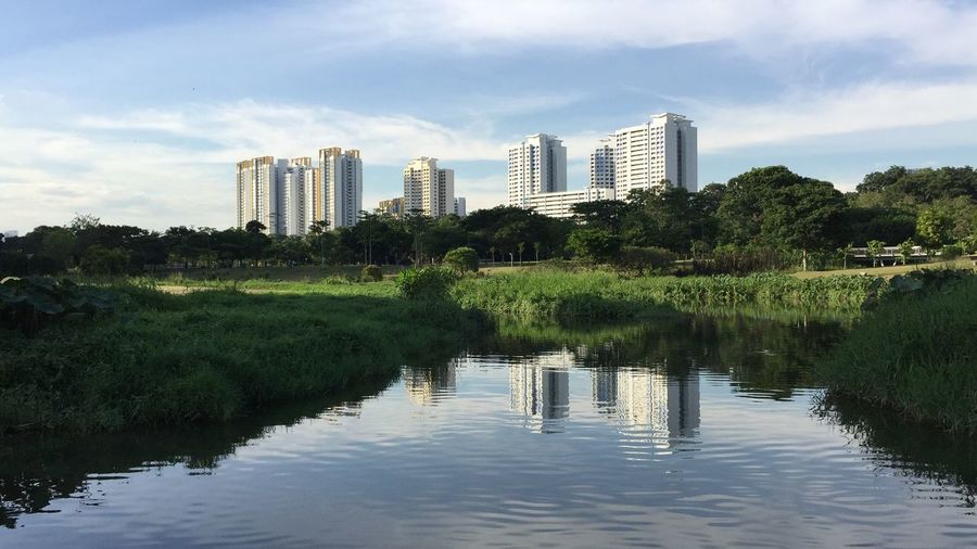 Singapore Bishan Park HDB City Urban Landscape Water Reflections In The Water