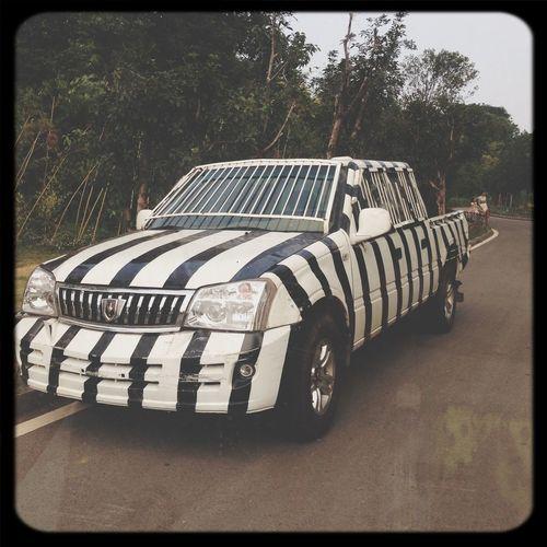 A zebra car !!!