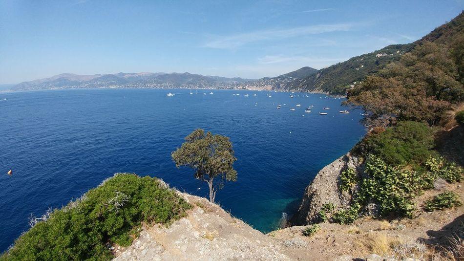 Punta Chiappa Water Outdoors Landscape Sea Mare Liguria Portofino Italy Coast Emiliano Perani Scenics Blue Mountain Summer Panorama Parco Naturale Di Portofino