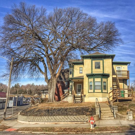 BROCCOLI HOUSE ~ Saint Joseph, Missouri USA ~ Building Exterior Architecture Built Structure Outdoors Tree Bare Tree Day Sky No People Façade Winter Landscape Kcac Artist January 2017 Cityscape Street Views William Christenberry Walker Evans Relicsofthepast Weathered Missouriphotography Ghosts Saint Joseph, Missouri Memories Urban Exploration Frozen In Time Architecture