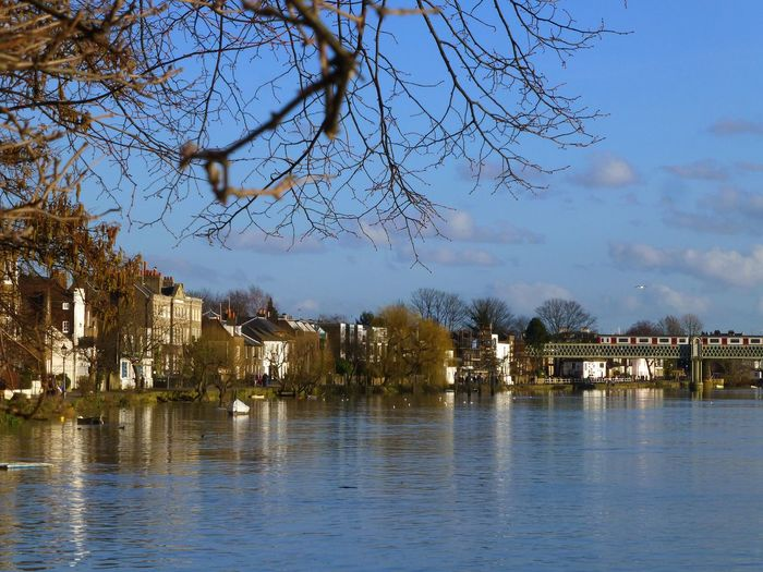 ChiswickRiverside Chiswick Thames Thames River Thamespath Picture Perfect River View Beautiful Scenery Beautiful Scene Perfect Scenery Perfection Tranquility Tranquil Scene Tranquil
