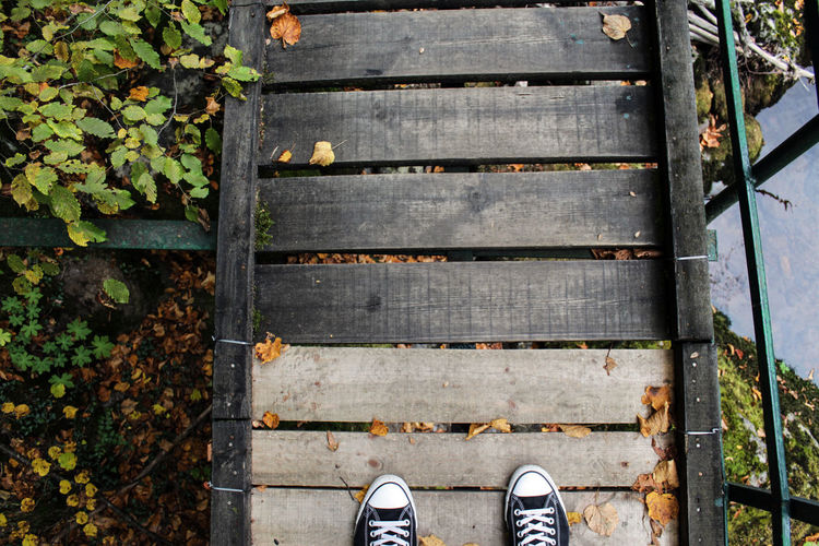 Low section of person standing on boardwalk during autumn