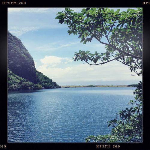 Calm Garageimg Lake Lakeshore Outdoors Taiwan Tranquility Tree Waterfront