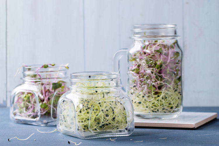Close-up of bean sprouts in jar on table against wall