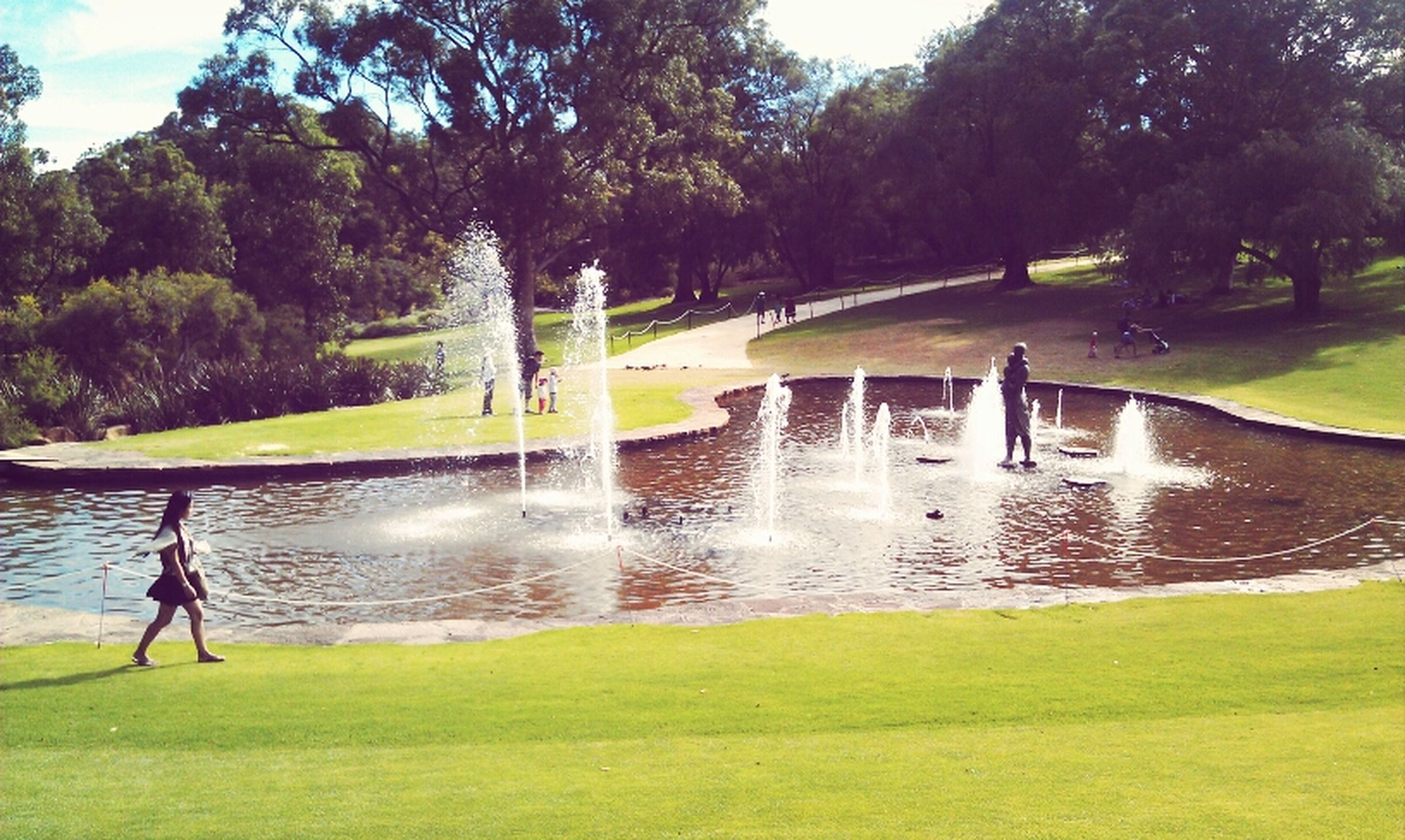 water, grass, tree, green color, fountain, motion, spraying, park - man made space, nature, reflection, beauty in nature, pond, splashing, growth, tranquility, sunlight, scenics, tranquil scene, day