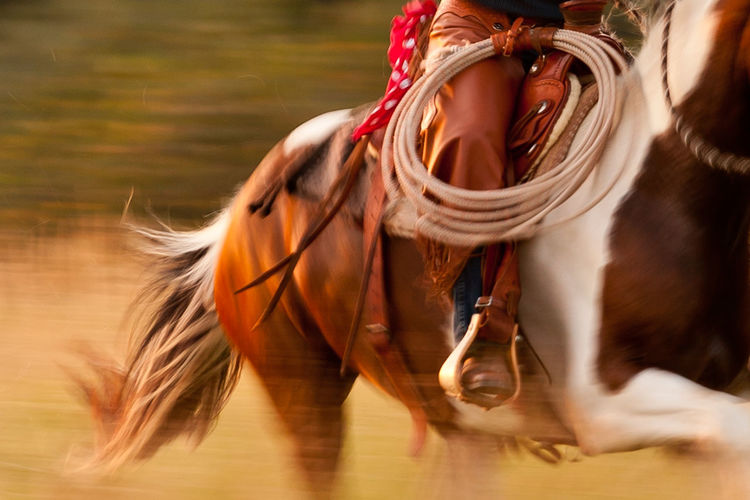 Low Section Of Cowboy Riding Horse On Field