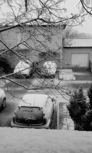 Prêtes Pour La Neige