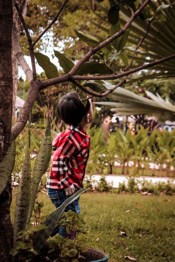 Boy standing by tree