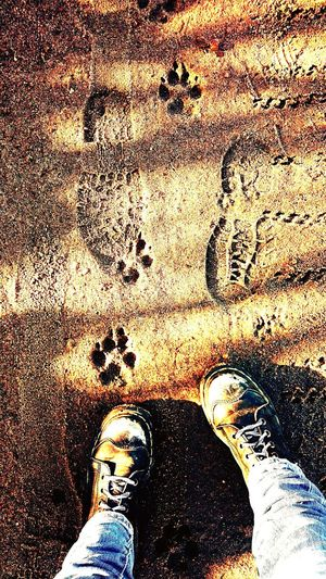 ...footprints and paw prints... Showcase March Where My Feet Take Me Footprints Muddy Road Muddy Footprints Paws Paw Prints My Boots ❤ My Boots Go Everywhere With Me Little Town In The Middle Of Nowhere Sunlight ☀ Sony Xperia Beautiful Nature Spring Is Coming  Country Life Taking A Walk