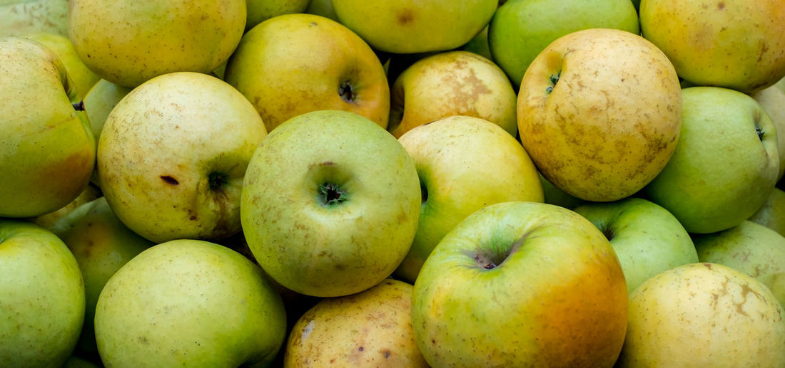 green and yellow apple background Green And Yellow Apple Background Fruit Food And Drink Healthy Eating Food Freshness Large Group Of Objects Wellbeing Full Frame Backgrounds Apple - Fruit Market Close-up Green Color Abundance Retail  No People Apple Still Life For Sale Market Stall Ripe