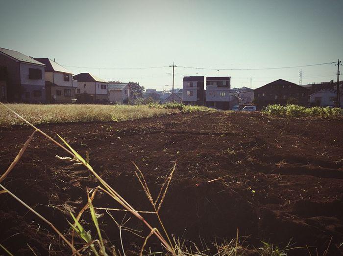 家って落ち着く 畑 最寄り 埼玉