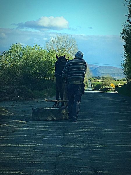 One Man And His Horse. Transportation Real People Working Outdoors Man And Horse