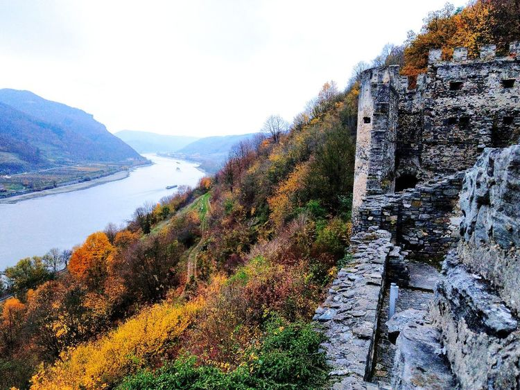The Danube River seen from the remains of the castle Hinterhaus Castle Danube Danube River Autumn Autumn colors Autumn Leaves Autumn Collection Autumn Mood Autumn Colours Autumnbeauty River River View Fall Fall Beauty Fall Colors Water Tree Mountain Sky Countryside Growing Tranquil Scene Scenics Calm Tranquility Idyllic Vineyard