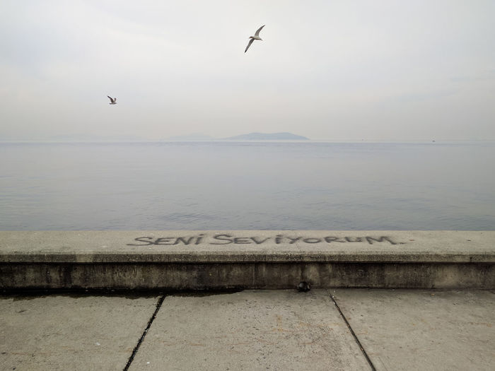 Animal Themes Bird Calm Concrete Day Geometric Graffiti Grey Horizon Over Water I Love You Island Ledge Nature Outdoors Sea Seagull Seni Seviyorum Sky Stillness Turkish Walkway Water Waterfront