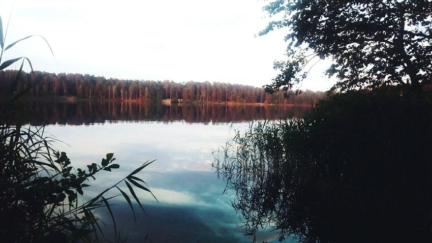 Black Lake Russian Nature Russian Beauty