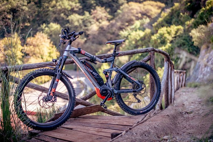 Bicycle on footpath in forest