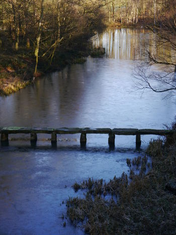 Frozen Lake Ice NostellPriory Beauty In Nature Bridge Bridge - Man Made Structure Day National Trust 🇬🇧 Nature No People Outdoors River Scenics Sky Tranquil Scene Tranquility Tree Water Winter