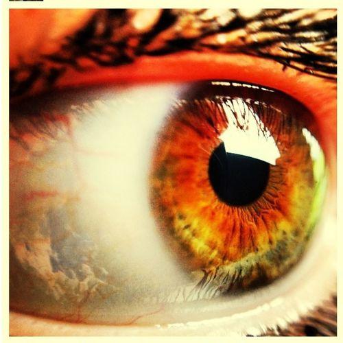 Cool pic of my eye