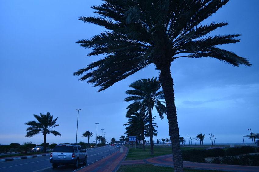 (صباحك انا.. ) استيقظ من نومي قبل موعد شروق الشمس .. ابحث عن هاتفي .. لاكتب لك (صباحك انا ..) Ad Dammam, Al Khobar Rany Day RASTUNORAH Sky Sky And Clouds Street Weekend