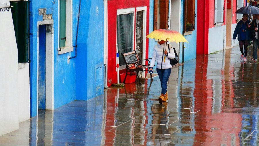 Venezia Colors