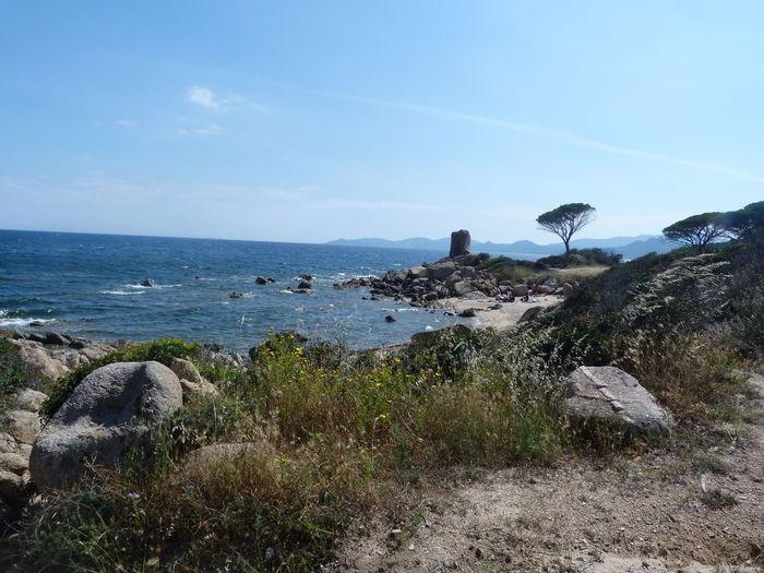 another part of the coast Sardinia Sardegna Italy  Sardinia Sardegna Water Sea Beach Bird Sky Horizon Over Water Shore Coast Calm Coastline Tranquil Scene Tranquility Rocky Coastline Coastal Feature