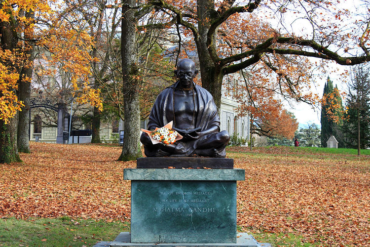 Statue in park during autumn