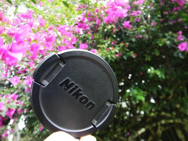 First Eyeem PhotoTaking Photos EyeEm Best Edits Photooftheday TheDay ••