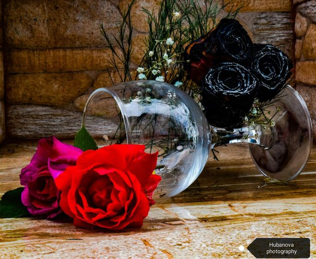 Day Outdoors Nature Photography Roses Are Red Roses🌹 Glass Wineglass Burned Rose