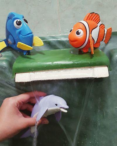 Nemo (: <3 . <3 Nemo Fish Dory ❤ Doryfish🐠🐠🐠 Nemo With Family..missing Dory:)! Doryfish Nemo :)
