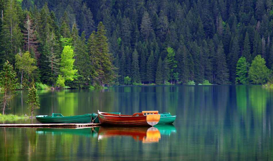 Beauty In Nature Day Forest Lake Montenegro Montenegro Wild Beauty Moored Nacionalni Park Durmitor Nature Nautical Vessel No People Outdoors Reflection Scenics Tranquil Scene Tranquility Transportation Tree Water