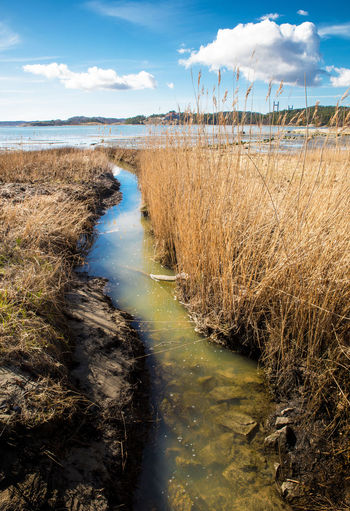 Stream meets the ocean Beautiful Day Beauty In Nature Blue Blue Sky Blue Water Day Horizon Over Water Landscape Landscape_photography Nature No People Outdoors Reed Scenics Sea Sky Stream Water White Clouds