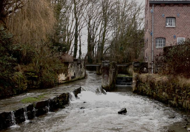 small lock in small river Bare Tree Building Exterior Day Go With The Flow Limburg Nederland Nature Netherlands No People Small Lock In Small River Small River Water Winter Time