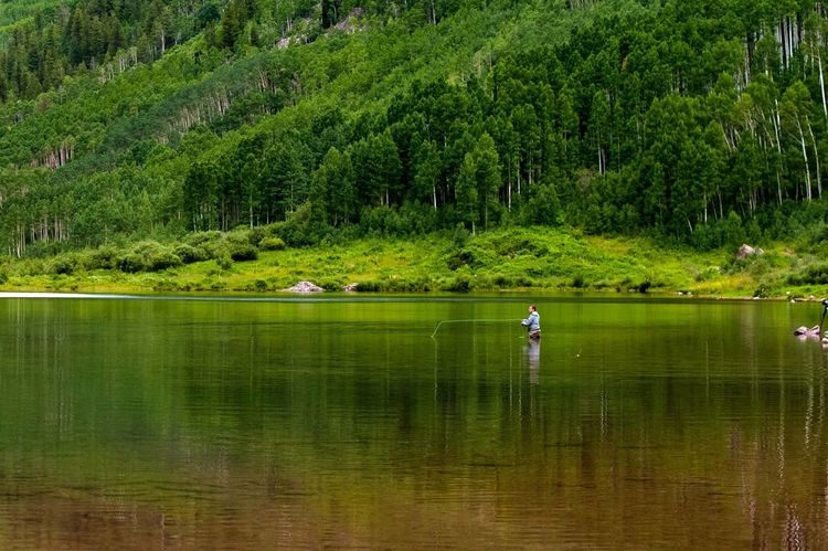 Been There. Colorado Beauty In Nature Day Fishing Forest Full Length Grass Green Color Growth Lake Leisure Activity Lifestyles Men Mountain Nature One Person Outdoors Real People Reflection Scenics Standing Tranquil Scene Tranquility Tree Water Waterfront