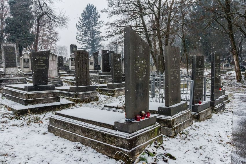 Cemetery Cemetery Photography Grief Memorial Spirituality Winter Cemetary Cemetery Cold Temperature Day Graves Gravestone Graveyard History Jewish Cemetary Jewish Cemetery Memorial No People Outdoors Sadness Snow The Past Tombstone Weather Winter