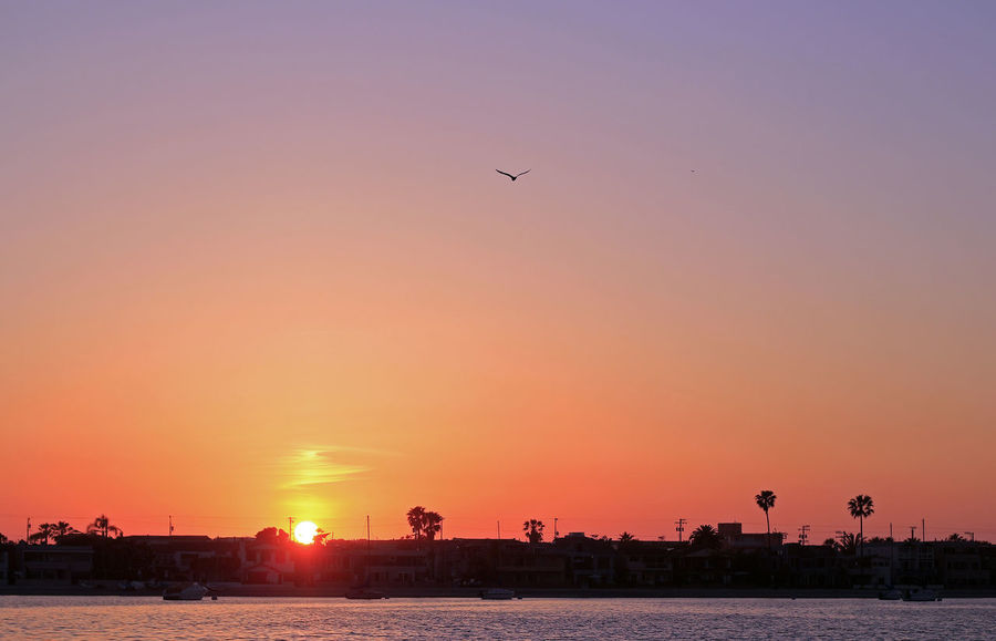 Just watching the sun go down and anything that comes across my way. lol Orange Sky Sunset Fall Color Reflections Golden Hour Mission Bay Mission Beach,San Diego