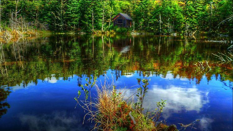 Nature Water Reflections Beautiful Nature EyeEm Nature Lover EyeEm Best Shots - Nature