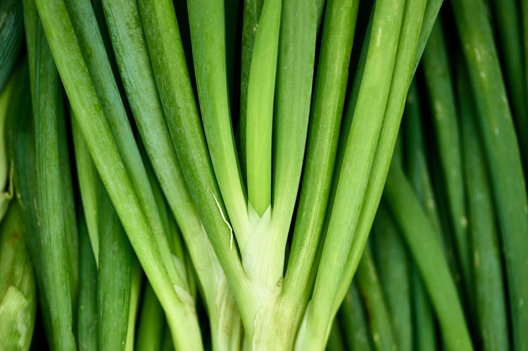 Veggie Abstract Abundance Beauty In Nature Close-up Farmers Market Green Color Healthy Eating Healthy Food Natural Pattern Vegetable