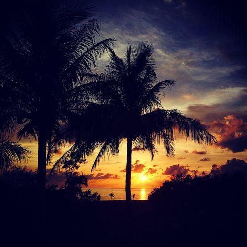日落sunset Relaxing Enjoying Life