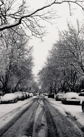 Sad snow. Eyephotography Mypictures EyeEm Best Shots Dreaming Nice Photo Anything! Black & White My Life EyeEm Nature Lover Blackandwhite Photography Black Blackandwhite EyeEm Gallery EMAzing Photgraphy Nice Pic Street Photography Streetphotography The Past Snow ❄ Snow Day Snowy Trees Snowman