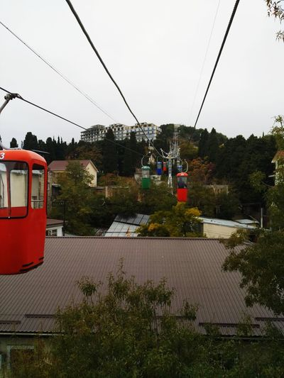 Funiculaire  Tree Sky Overhead Cable Car Cable Car Public Transportation