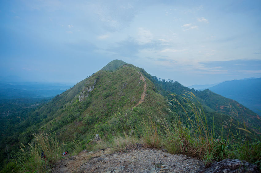 Berekeh Hill, Sungai Siput, Perak, Malaysia. Guess Hiking Nature Tranquility Vacations Walking Around Adventure Beauty Beauty In Nature Day Exploration Friendship Landscape Leisure Activity Lifestyles Men Mountain Mountain Range Outdoors Real People Scenics Sunrise Togetherness Tranquil Scene Women