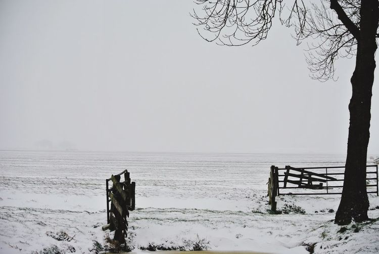Snow Snow ❄ First Snow Landscape_Collection Landscape_photography Landscape Photography Landscapes Winter Wintertime
