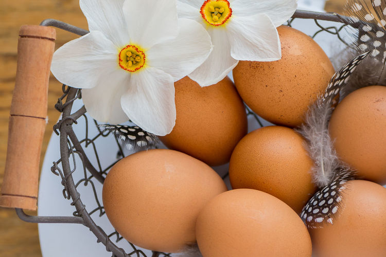 Poet's Daffodils with chicken eggs and feathers Chicken Poet's Daffodil Still Life Photography Chicken Egg Daffodil Egg Enjoying Life Flower Food Freshness No People Still Life White Color