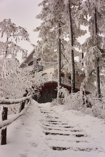 Architecture Beauty In Nature Cold Temperature Day House In The Mountains Landscape Mountain Shelter Nature No People Outdoors Sky Snow Snowing Steps And Stairs Tree Winter Winter Scenery