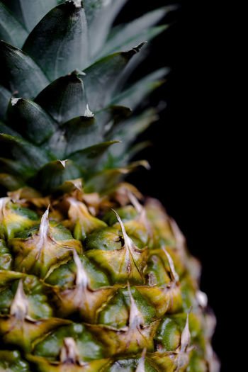 Pineapple macro shot with selectivefocus on leaves Composition Dream Exotic Juice Missing Pineapple Close-up Dark Background Details Food Food And Drink Freshness Fruit Green Color Greenery Growth Healthy Eating Macro Nature Organic Plant Skin Spots Texture Vitamin