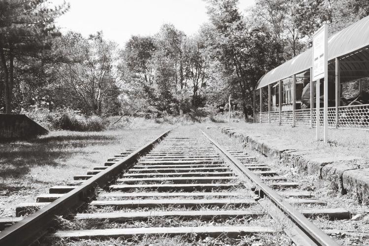 월정리역 Historical Historical Place Division Old Train Station Korea EyeEm Korea Black & White Focus On The Story