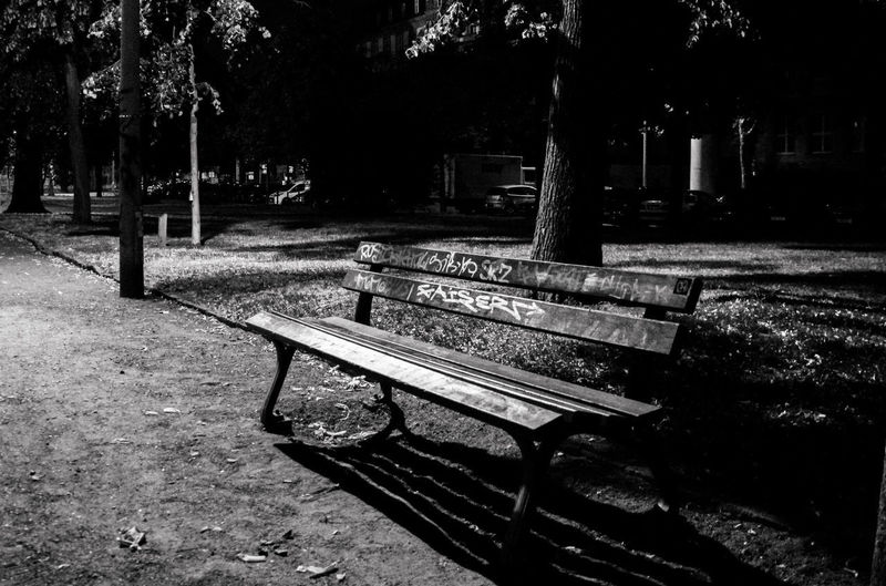 Absence Bench