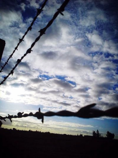 Sky Barbed Wire Barbed Wire Sunrise Barbed Wire Against The Sky Barbed Wire Fence