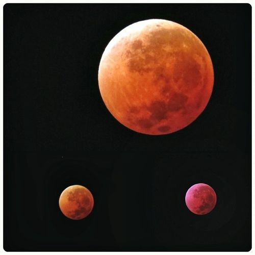 Eclipse lunar Canon Sx50 Moon Blood photooftheday instalike