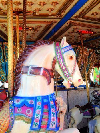 Carosel Merry Go Round Carnival Horse ?